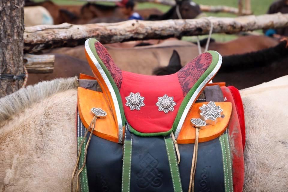 Horse trek Mongolia.