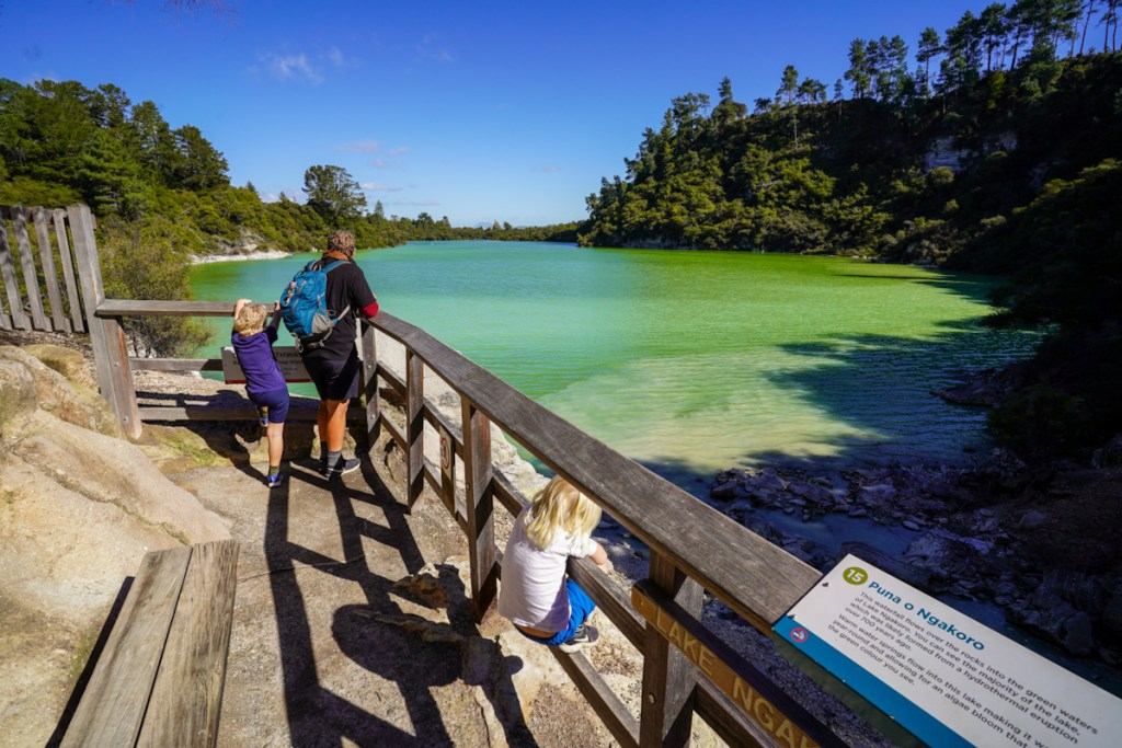 Beautiful green Lake Ngakoro at Waiotapu Rotorua, New Zealand.