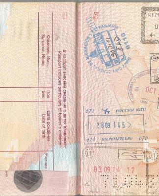 Действующая виза в аннулированном паспорте