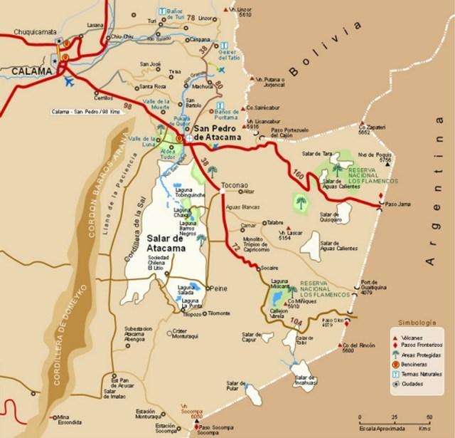 Пустыня Атакама через 10 дней