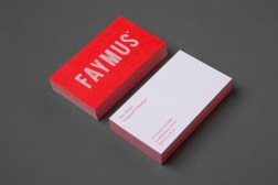 30-Faymus-Branding-Business-Cards-by-Studio-Brave-on-BPO