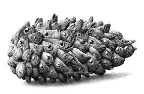 Некоторые работы удивительного голландского иллюстратора Редмира Хекстра