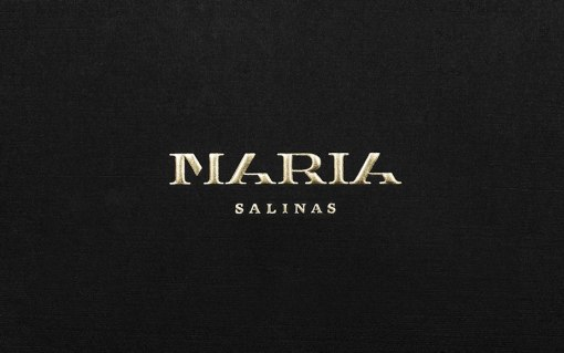 Фирменный стиль и интерьер мексиканского ювелирного бутика Мария Салинас