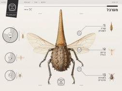 Приложение Insect Definer