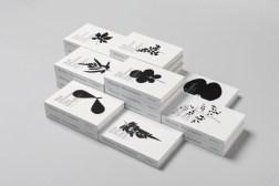 Дизайн обложки книги Dias exemplares (Specimen Days)