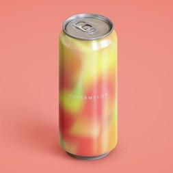 Концепт дизайна банок серии фруктово-ягодных напитков