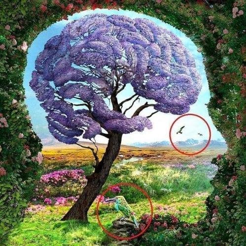 O que você vê nessa imagem revela segredos do seu inconsciente