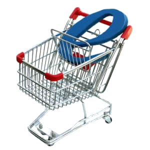 ecommerce cms shopping cart