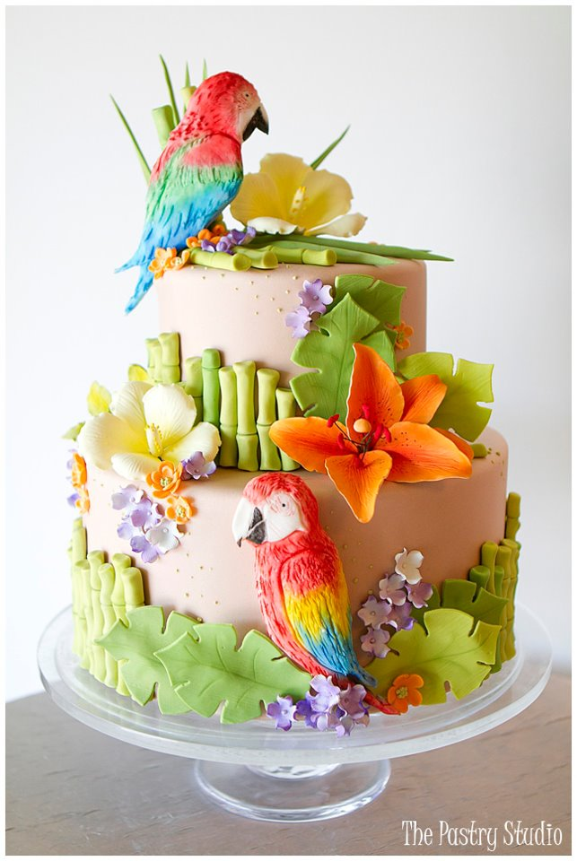 Spring Bird Theme Shower