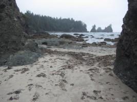 A respite of sandy beach