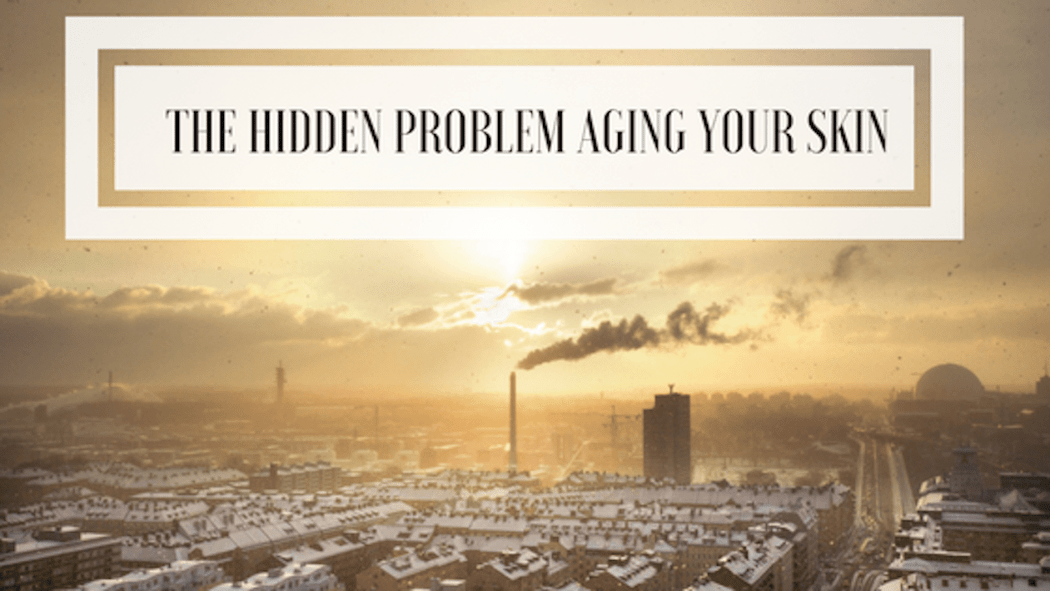 pollution harmingyour skin