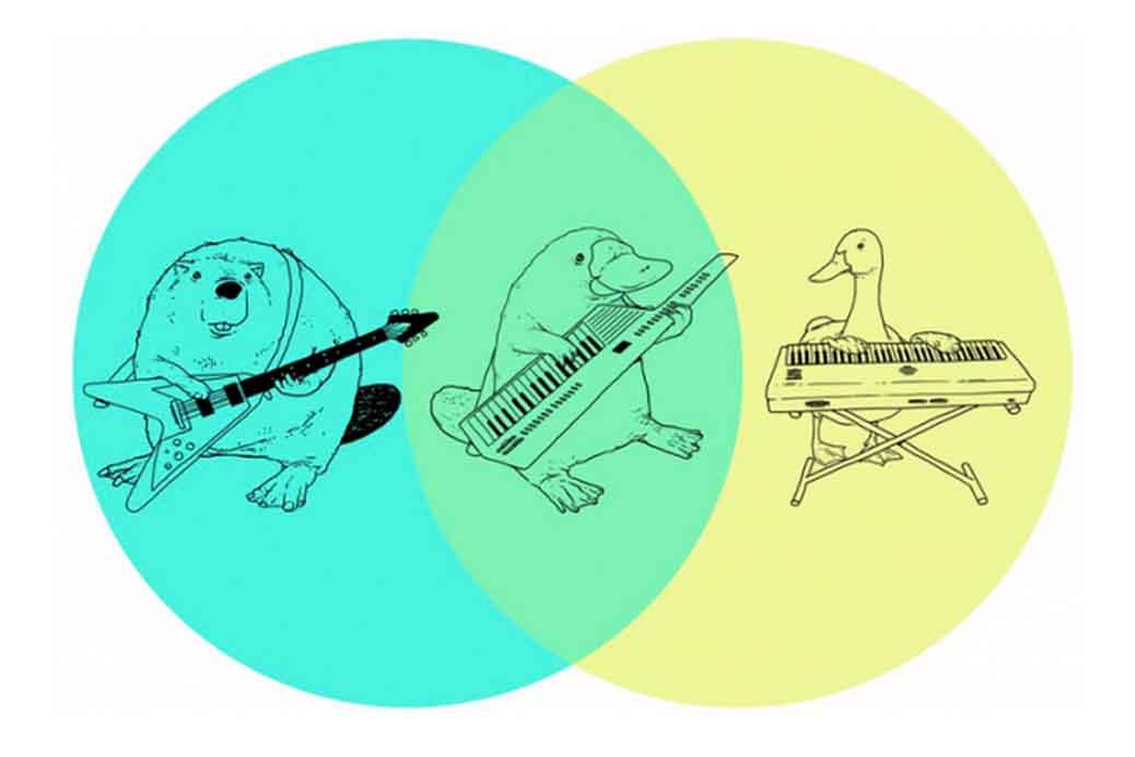 duck billed platypus venn diagram - Vatoz.atozdevelopment.co