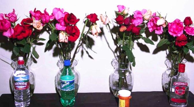 Scientific Ways to Make Cut Flowers Last Longer