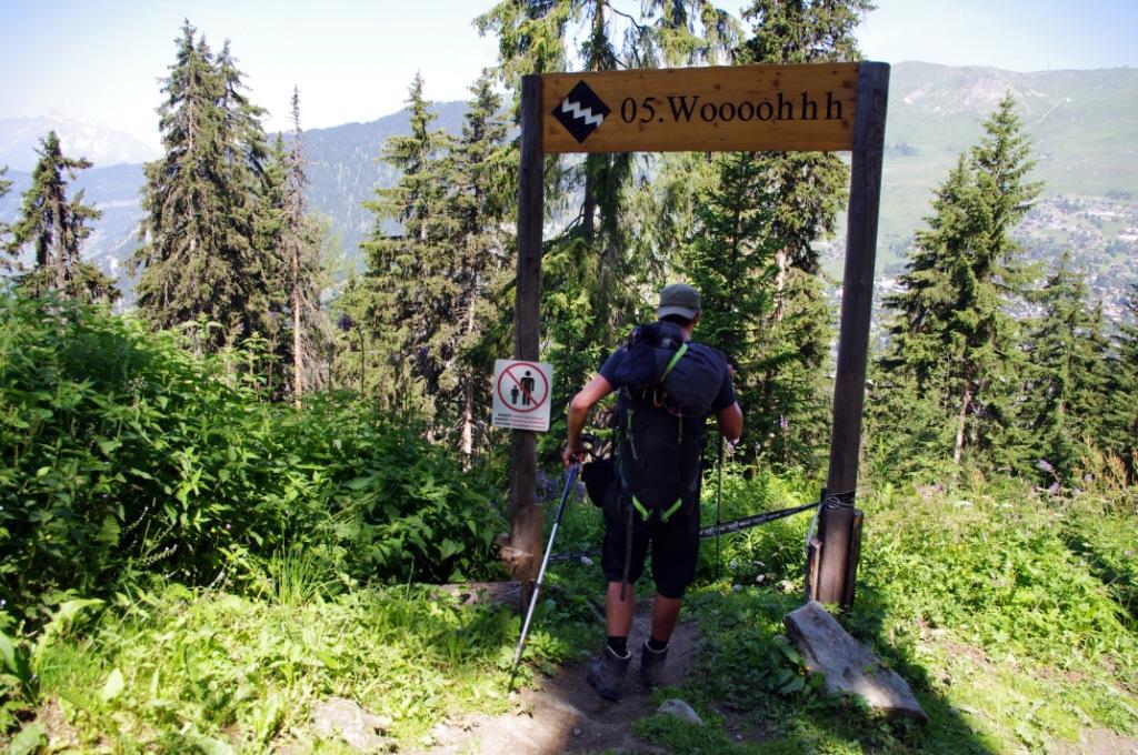 Walker's Haute Route - Stage 5 (CC awesomatik.com)