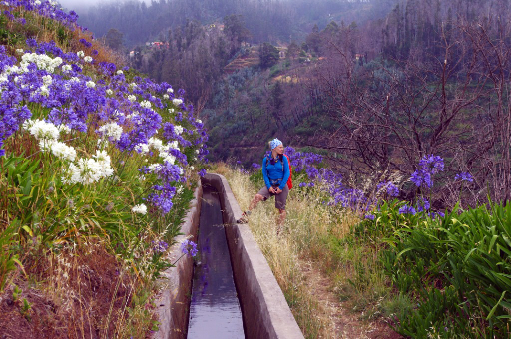 Madeira Teil 2: All along the Levada