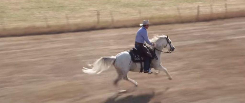 harmony-with-horses-screencap2