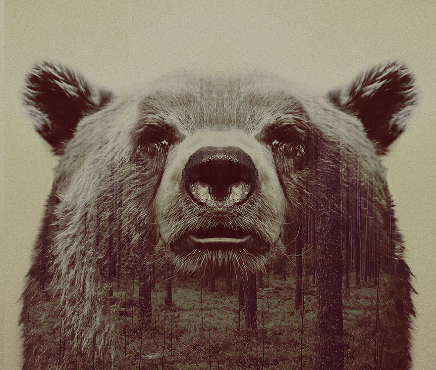 animals_landscapes_doubleexposure_10