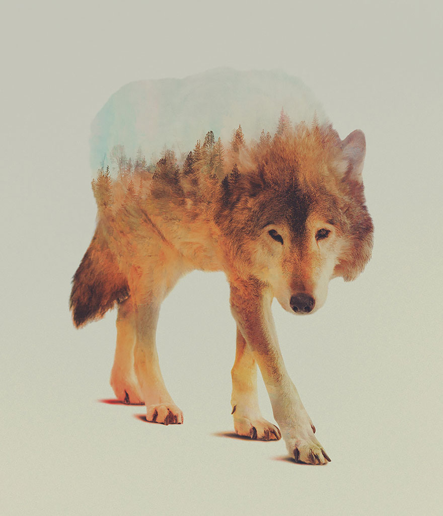 animals_landscapes_doubleexposure_12