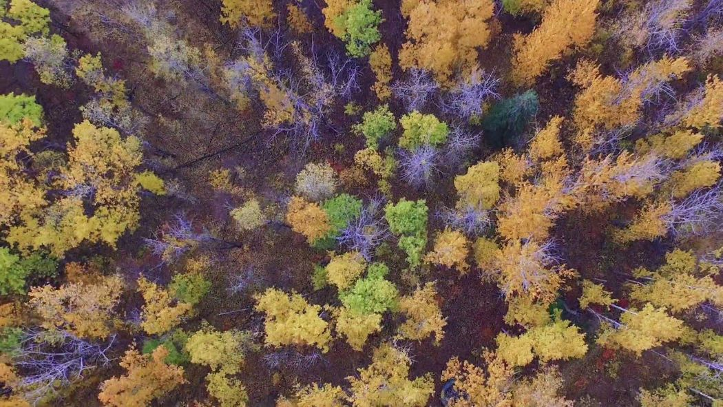 Into the west North America Screencap 3