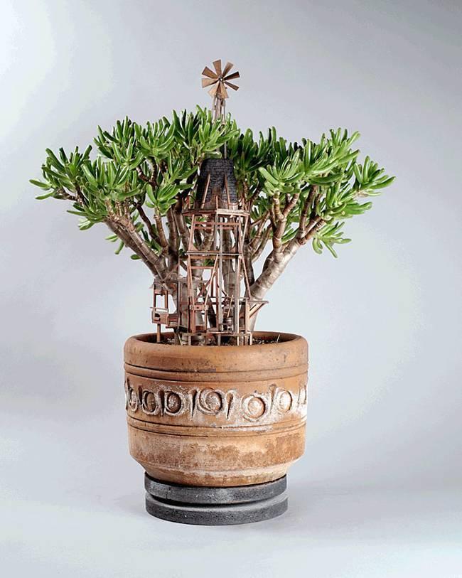houseplant-treehouses-jedediah-corwyn-voltz-10.jpg.650x0_q70_crop-smart