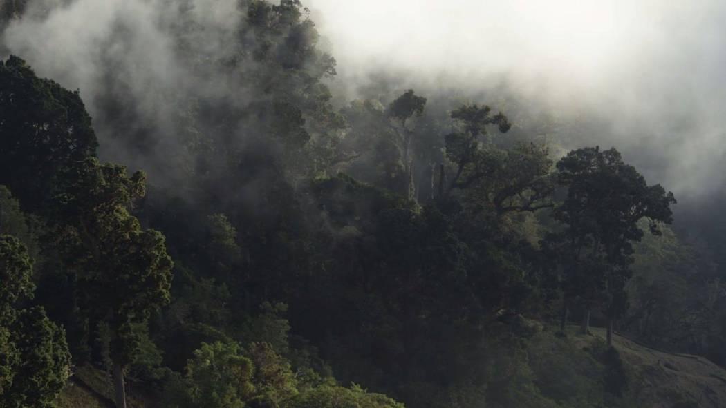 Costa Rica in 4k