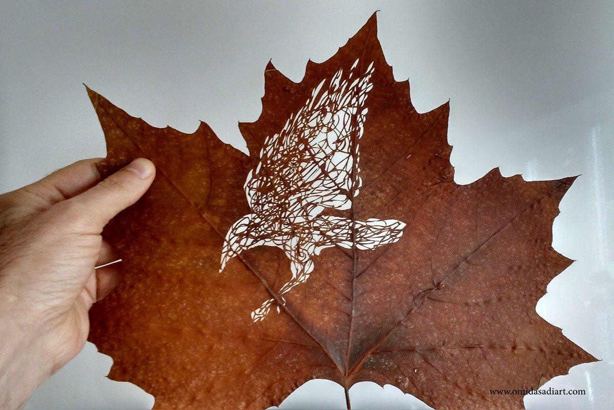 Omid Asadi Leaf Art Image 4