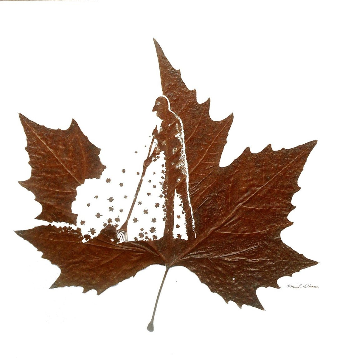 Omid Asadi Leaf Art Image 6