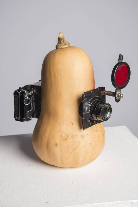 35mm Butternut Squash Camera