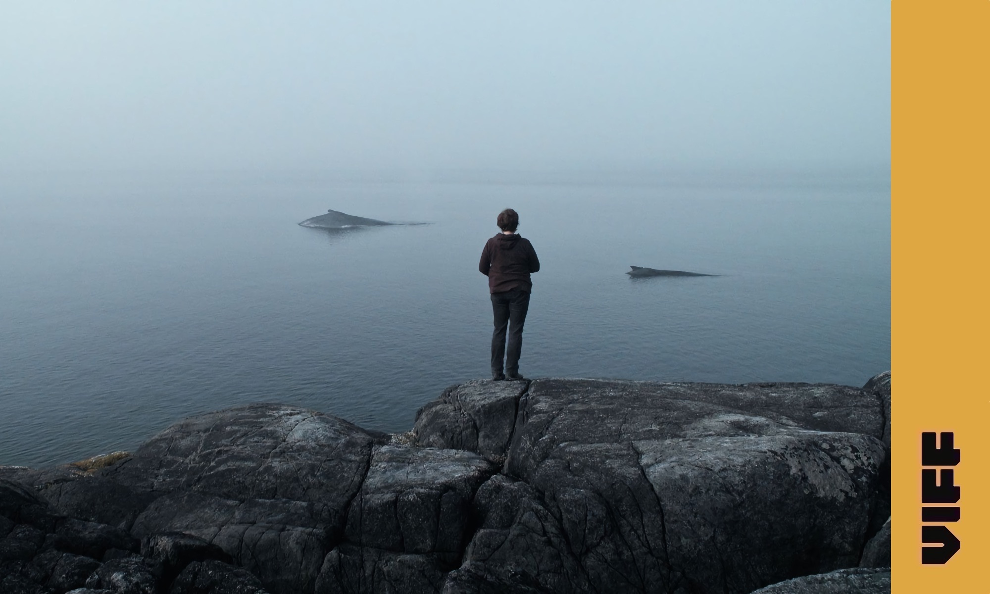 The Whale and the Raven / VIFF 2019