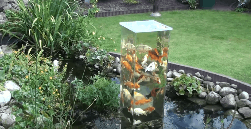 How Build Garden Koi Pond