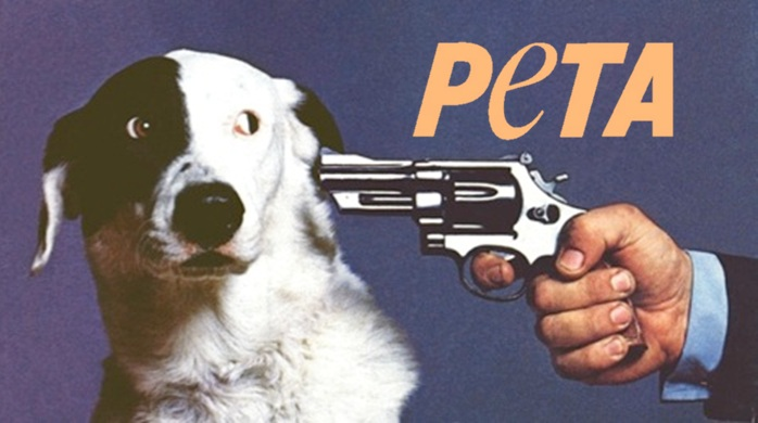 Image result for PETA kills dogs