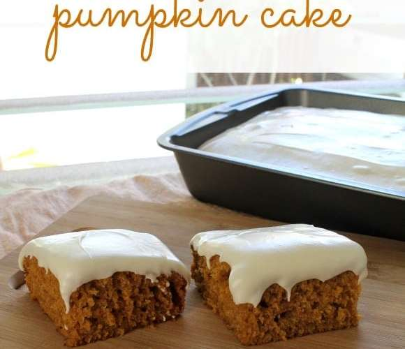 Pumpkin Cake | How to be Awesome on $20 a Day