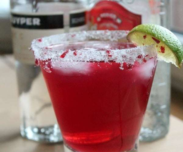 Cranberry Margarita   How to be Awesome on $20 a Day