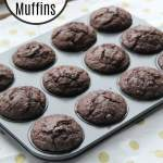 Double Chocolate Muffins   How to Be Awesome on $20 a Day