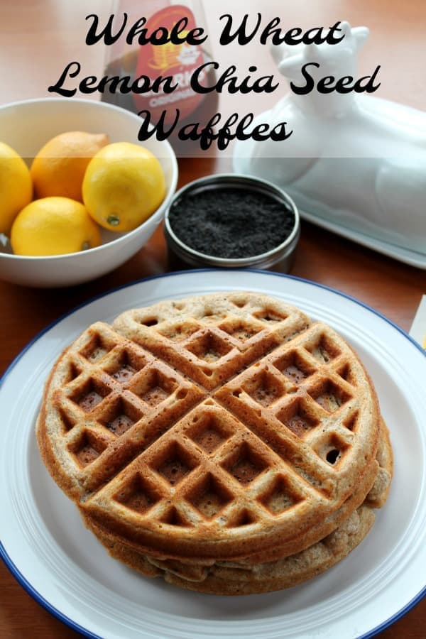 Whole Wheat Lemon Chia Seed Waffles | How to be Awesome on $20 a Day