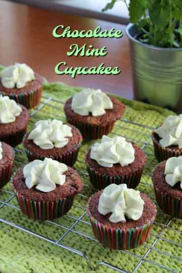 Chocolate Mint Cupcakes   How to be Awesome on $20 a Day