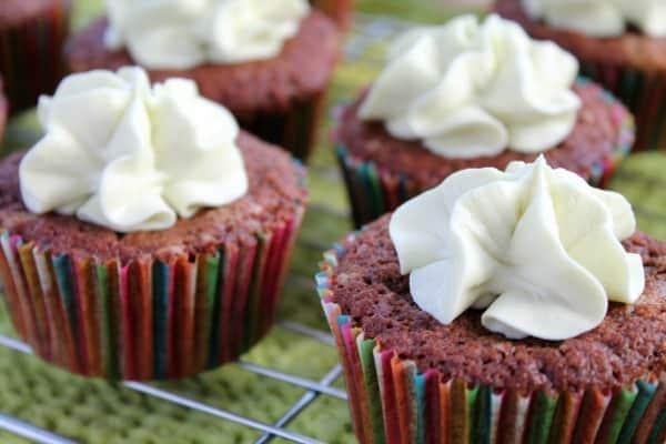 Chocolate Mint Cupcakes | How to be Awesome on $20 a Day