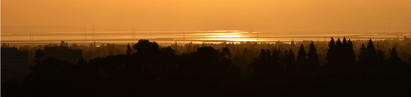 Palo Alto Baylands at Dawn