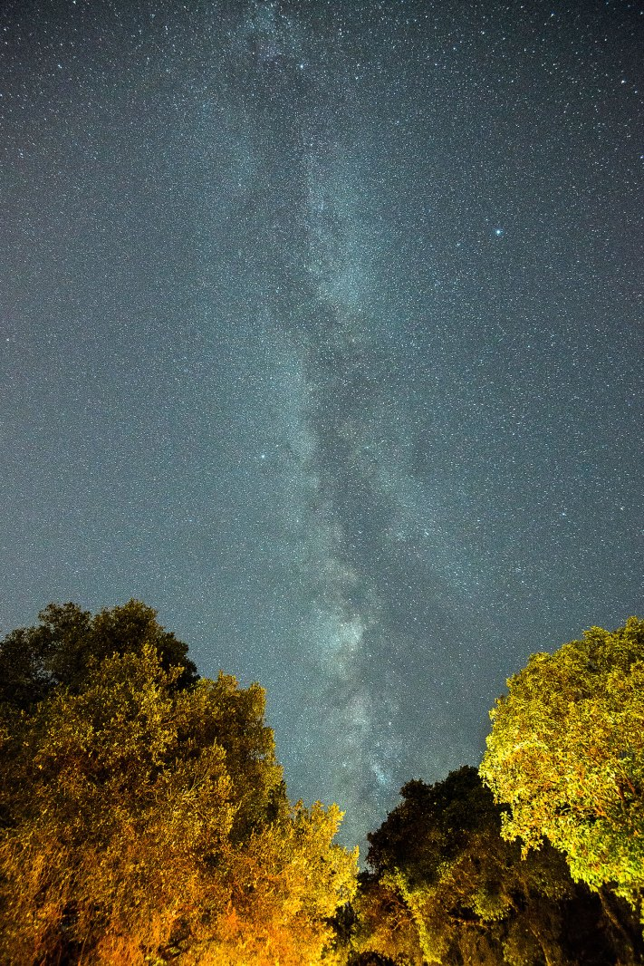 Silicon Valley Milky Way