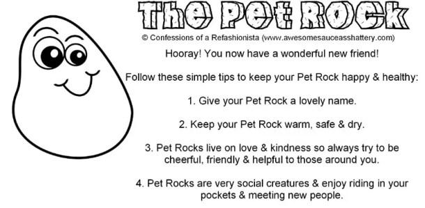 pet rock care EN