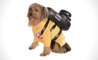 55+ Cool Pet Costumes For Dogs Of All Sizes ( Dog Costume ...