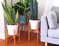 Living Room Plant Stands | www.myfamilyliving.com