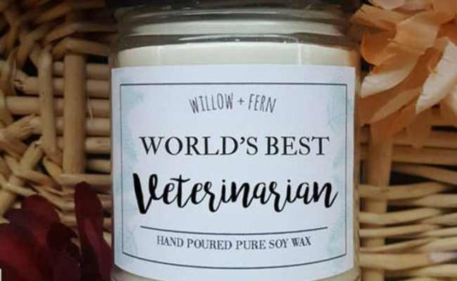 29 Unique Gifts For Veterinarians Best Gift Ideas For Vets