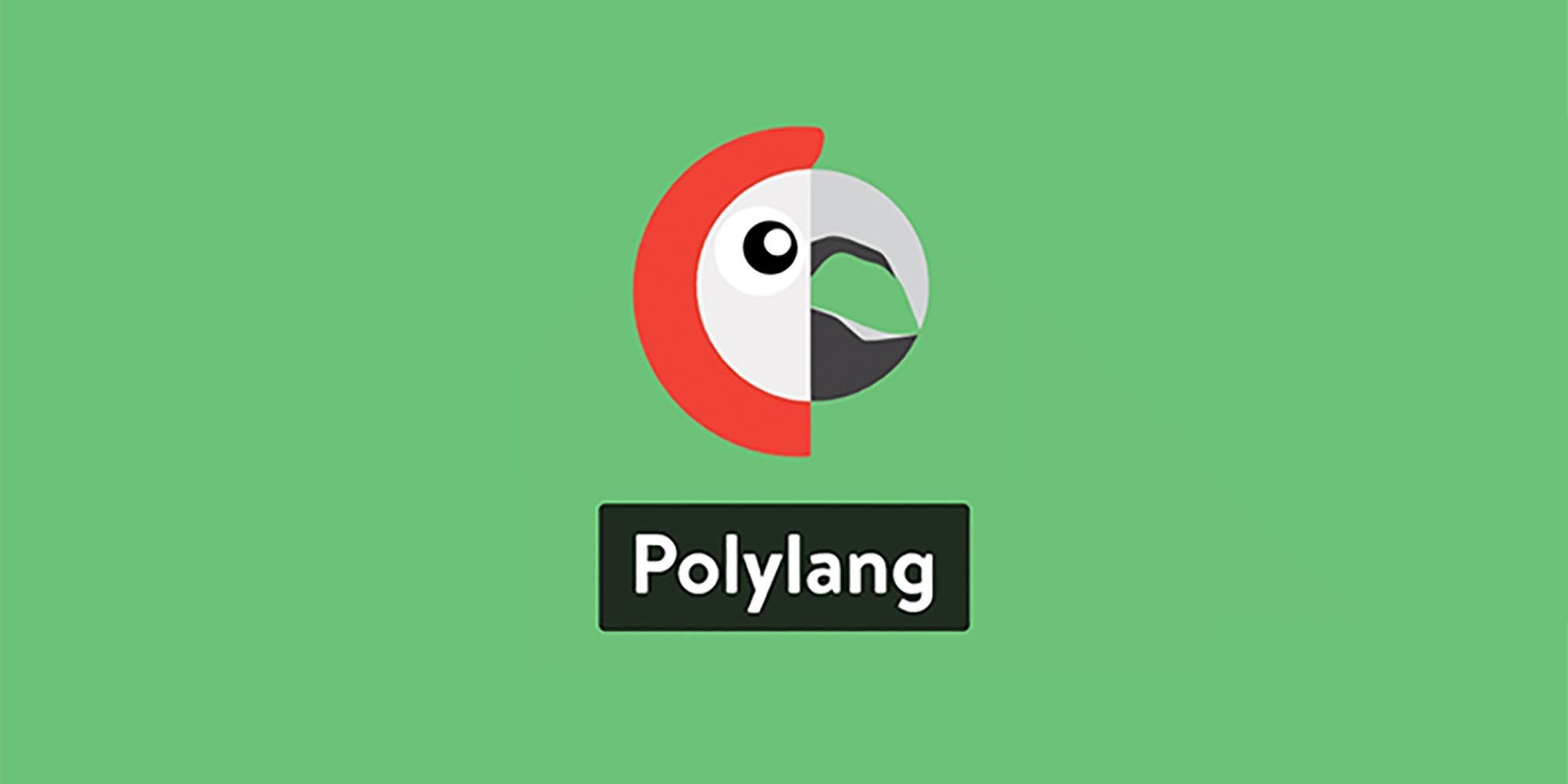 Polylang Guide: How to Create a Multilingual Web in WordPress