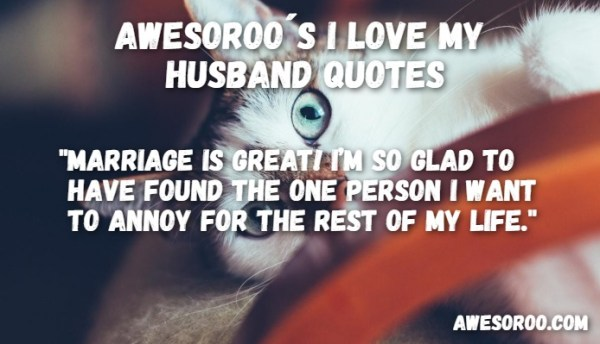 159 AWESOME I Love My Husband Quotes with Images Feb