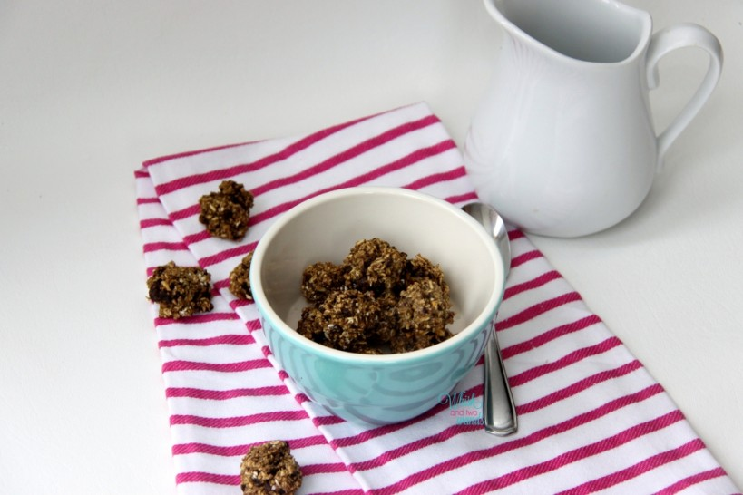 """Chocolate Chip Cookie Bites """"cereal"""" (No protein powder, dark chocolate chips, dropped into small balls)"""