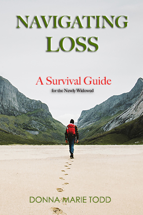 Navigating Loss by Donna Marie Todd