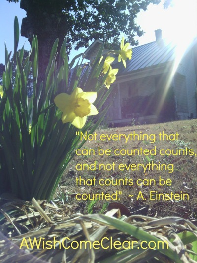 """stop rushing and start living, 'Not everything that can be counted counts, and not everything that counts can be counted.'"""" - Einstein"""