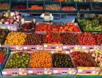 Boerenmarkt Dordrecht