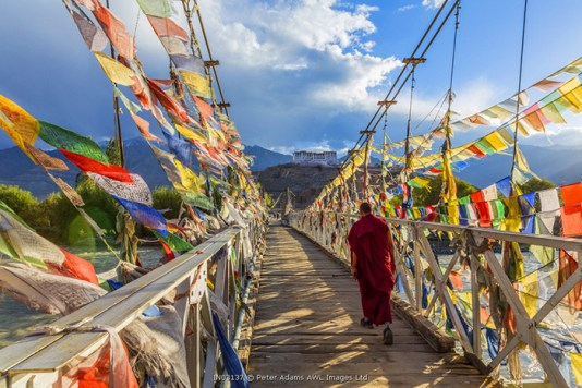 Monk & bridge covered in prayer flags, Stakna monastery, nr Leh, Ladakh, India